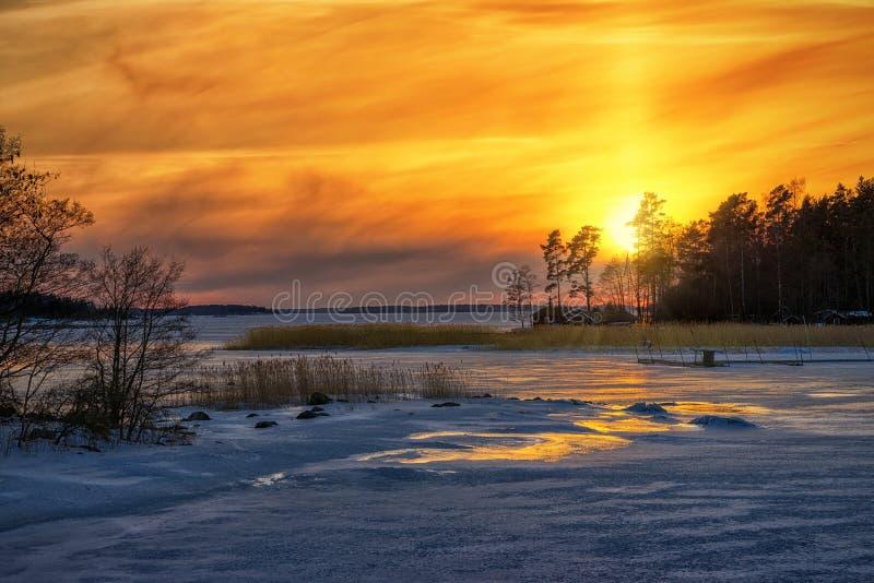 Vintersolnedgångreflexioner från det iced havet royaltyfri bild