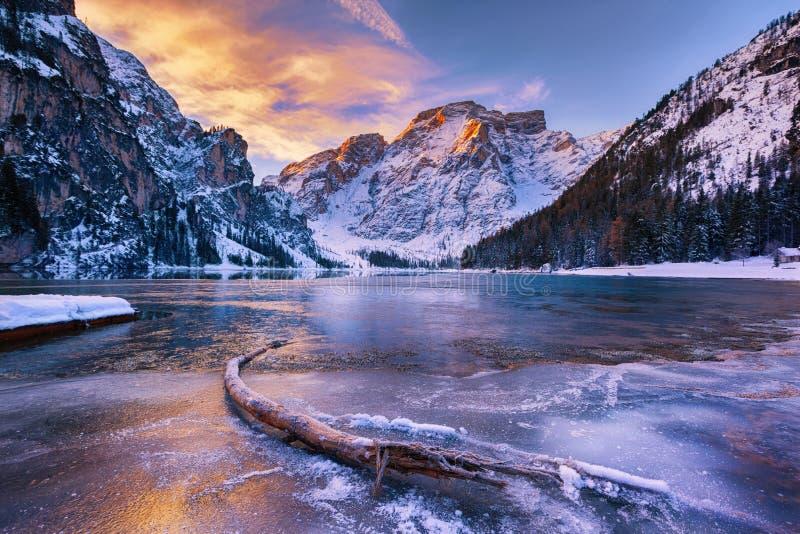 Övervintra soluppgång över Lago di Braies, Dolomites, Italien fotografering för bildbyråer