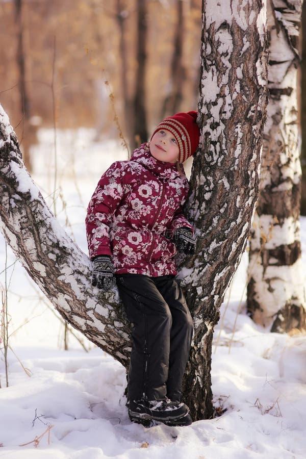 Övervintra ståenden av en flicka i skogen royaltyfri fotografi