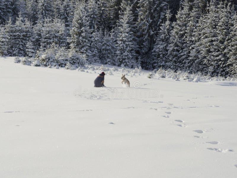 Övervintra underland som förbluffar, flickan som spelar med hunden royaltyfri bild