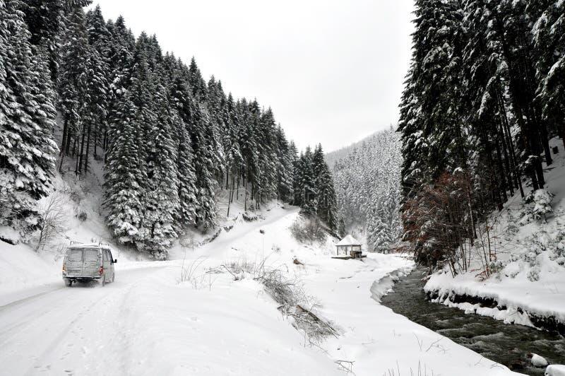 Övervintra vägen i landssida med granträd royaltyfria bilder