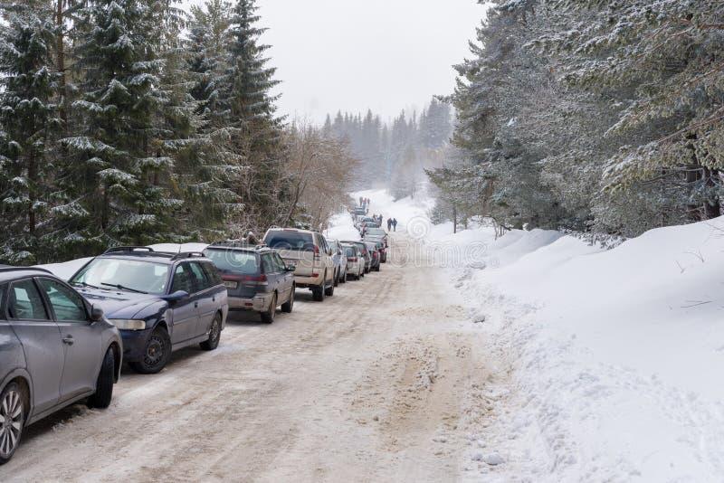 Övervintra vägen i skogen och långa raden av parkerade medel royaltyfri bild