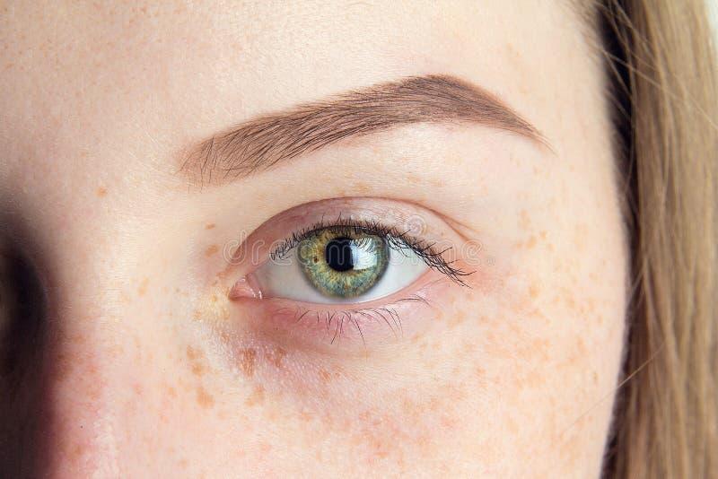 Övre öga och ögonbryn för slut arkivbilder
