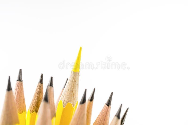 Övre bild för slut av blyertspennor royaltyfri foto