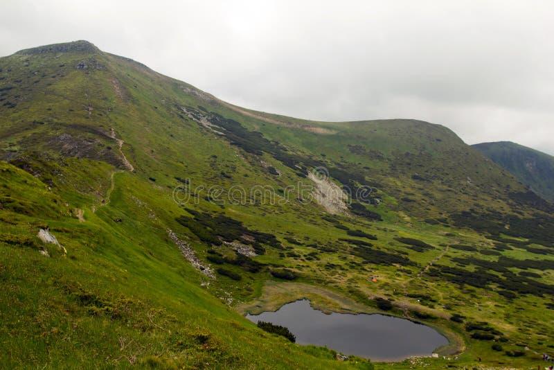 övre sikt för carpathian berg royaltyfria foton