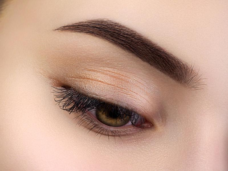 Övre sikt för slut av det härliga bruna kvinnliga ögat royaltyfria bilder