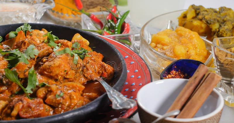 Övre sikt för slut av en feg tikkamasala med indiska kryddor royaltyfri bild