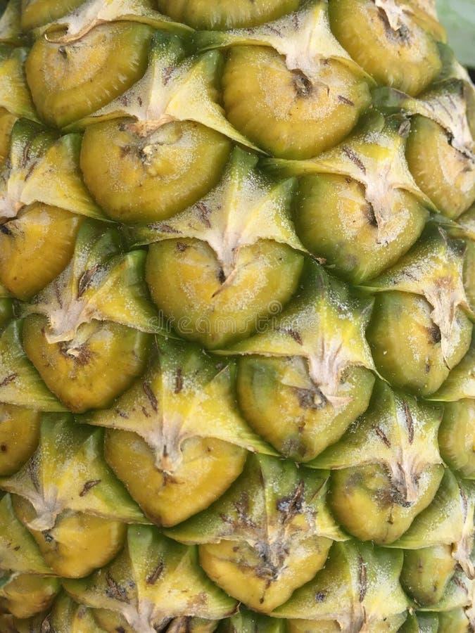 Övre textur för slut av ananashud royaltyfria bilder