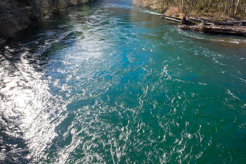 ÖvreMcKenzie flod i Oregon arkivbilder