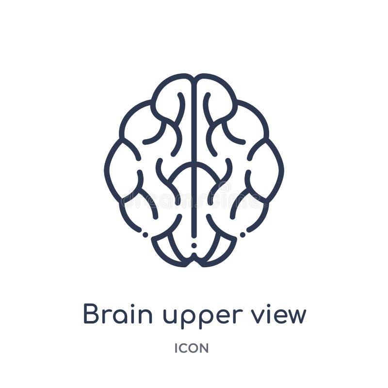 Övresiktssymbol för linjär hjärna från samling för översikt för människokroppdelar Tunn linje hjärnövresiktssymbol som isoleras p royaltyfri illustrationer