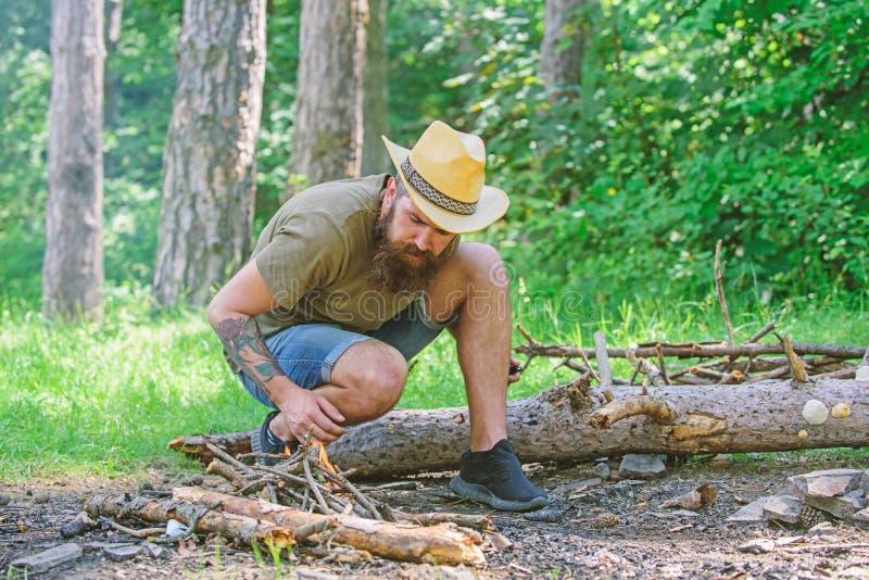 Última guía a las hogueras Cómo construir la hoguera al aire libre Arregle las ramitas de maderas o los palillos de madera que se fotos de archivo libres de regalías