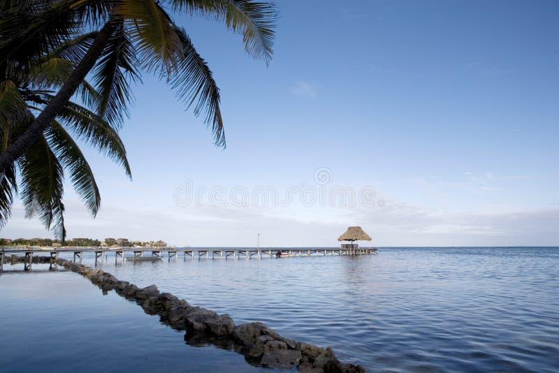 Última hora de la tarde a lo largo de la orilla durante la bajamar fotografía de archivo libre de regalías