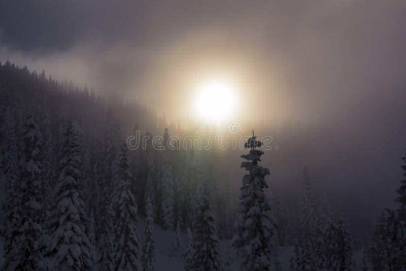 Última puesta del sol nebulosa a través de la niebla sobre los tops del árbol Nevado en bosque de la montaña fotos de archivo