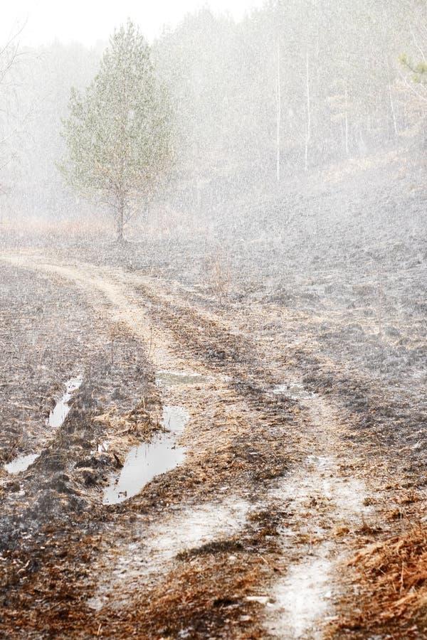 Última queda de neve imagens de stock
