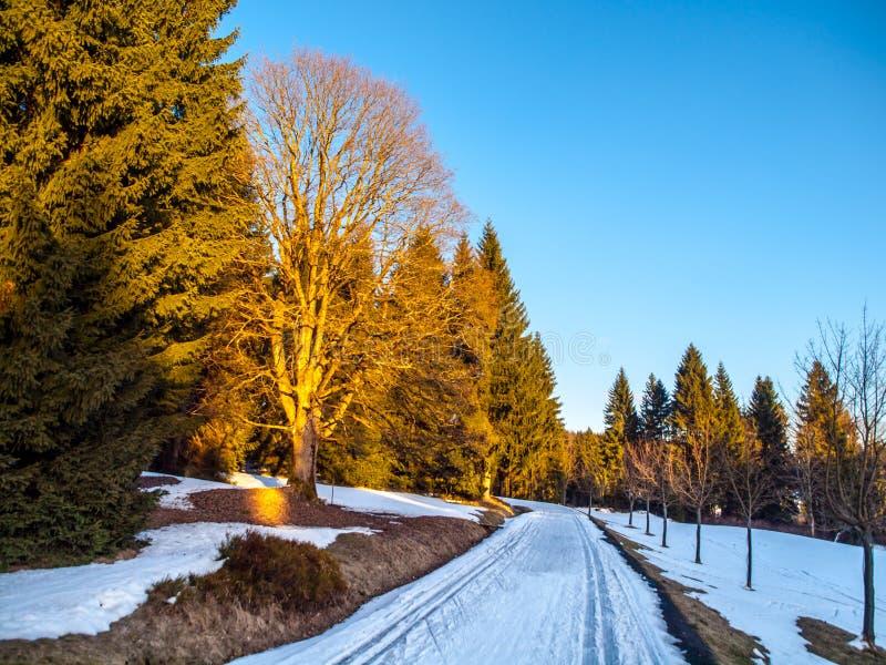 Últimas pistas del esquí del campo a través del invierno Resto de nieve en la tarde soleada cerca del pueblo de Kristianov, monta foto de archivo libre de regalías
