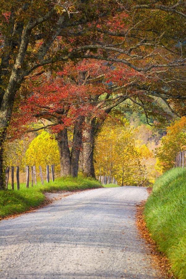 Último Autumn Afternoon en el Smokies imagenes de archivo