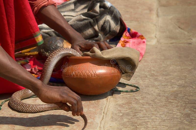 Último encantador de serpente (Bede) de Benares foto de stock royalty free