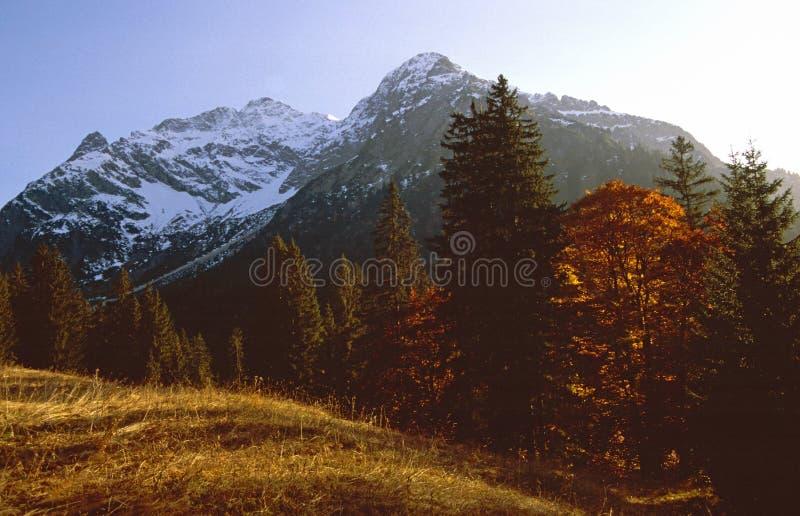 Último otoño en las montañas fotografía de archivo libre de regalías