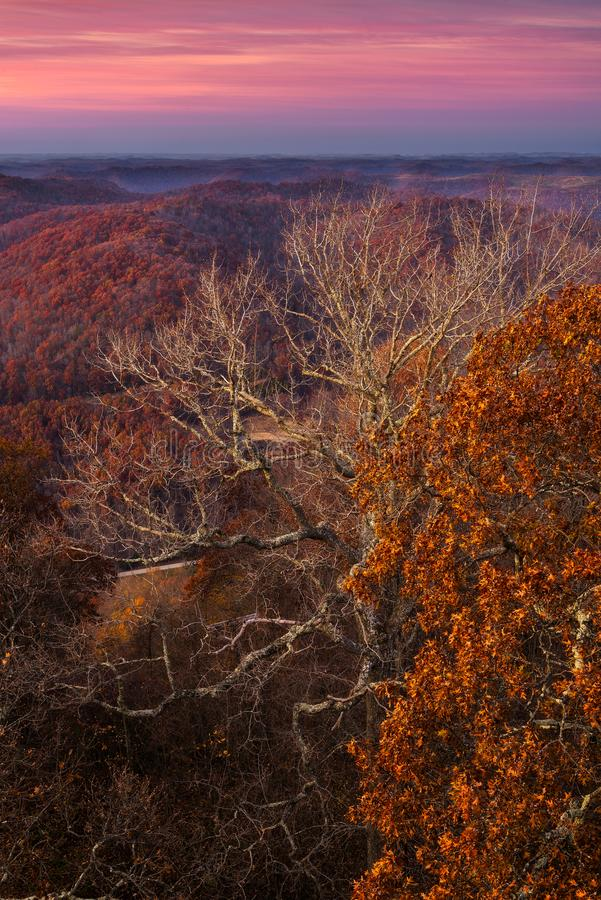 Últimos colores de la caída, montañas apalaches imagen de archivo libre de regalías