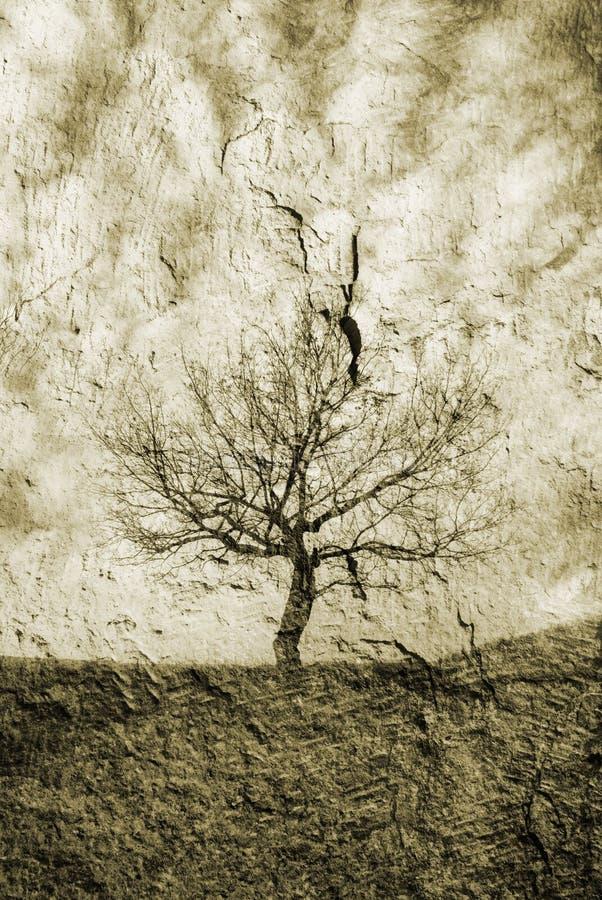 Download Única árvore imagem de stock. Imagem de outono, arte - 10054385