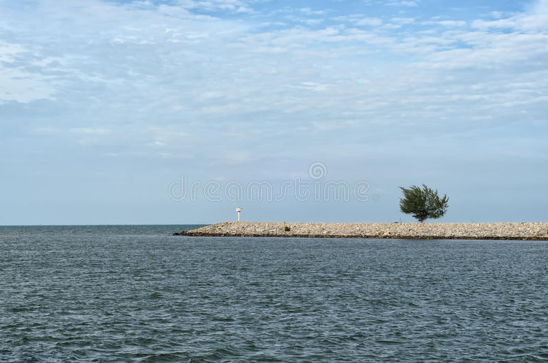 Única árvore no cais no mar sob o céu nebuloso - tudo em azul imagem de stock royalty free