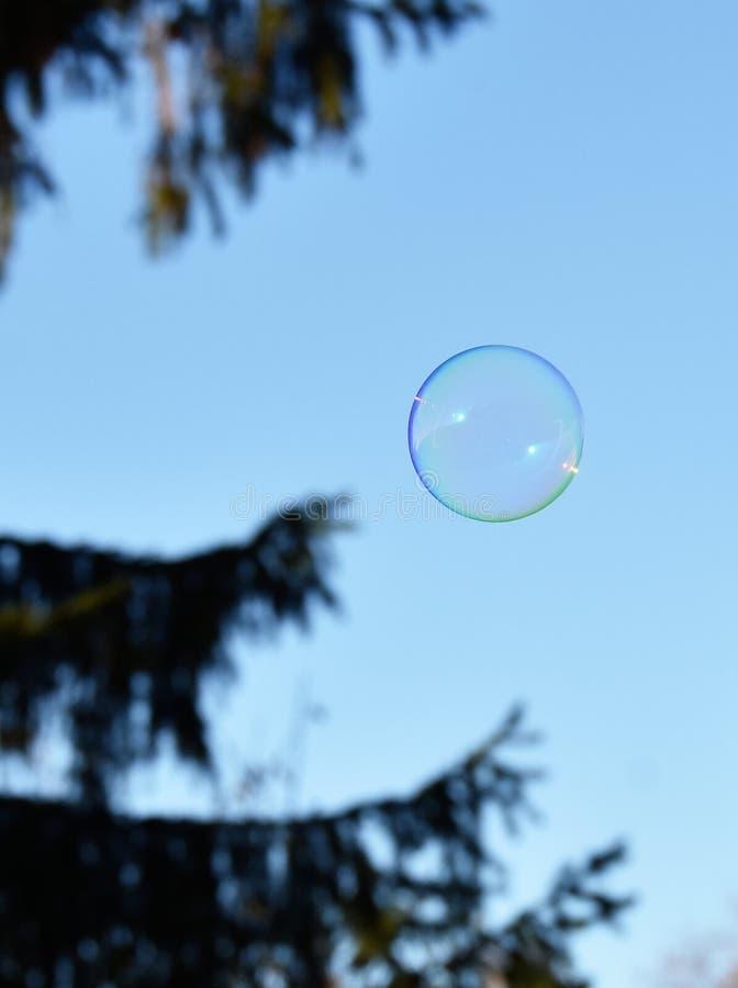 Única bolha de sabão exterior imagens de stock royalty free