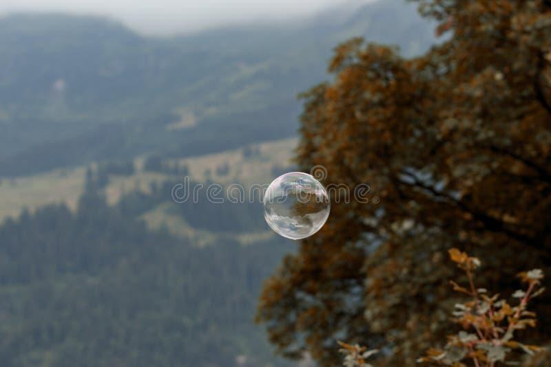 Única bolha de sabão na natureza imagens de stock royalty free