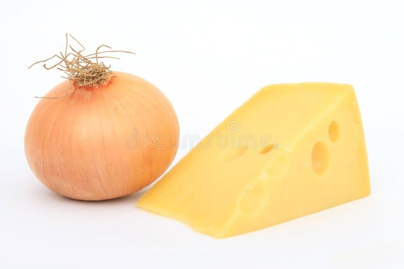 Única cebola com queijo suíço fotos de stock royalty free