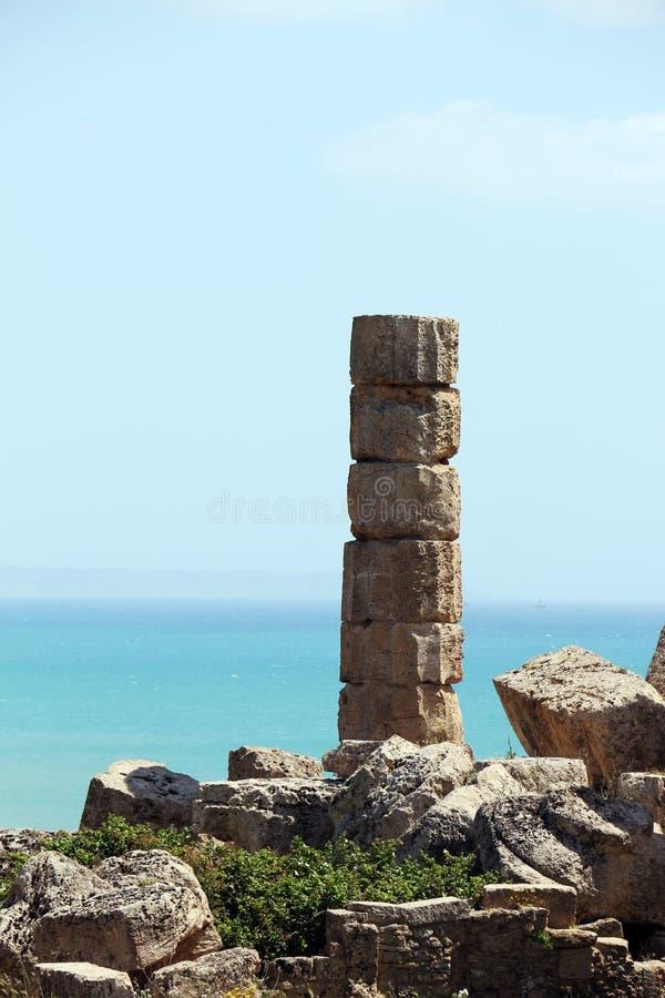 Única coluna grega doric antiga, selinunte imagem de stock