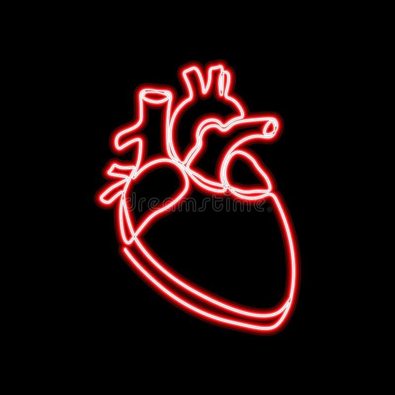 Única linha contínua silhueta humana anatômica do sinal de néon do coração da arte Vermelho de néon saudável do fulgor do projeto ilustração do vetor