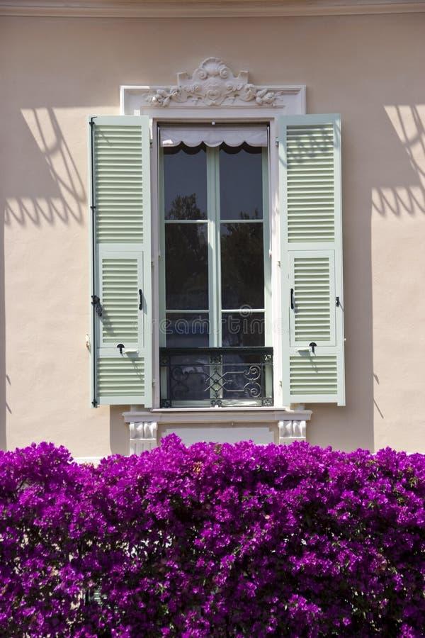 Única viúva de Monaco foto de stock