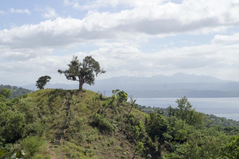 Único árbol en el lago y el volcán de desatención hilltop foto de archivo libre de regalías