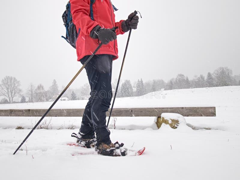 Único caminhante da neve ou nuvens transversais do mulher dos esportes do esquiador e as cinzentas mim fotografia de stock