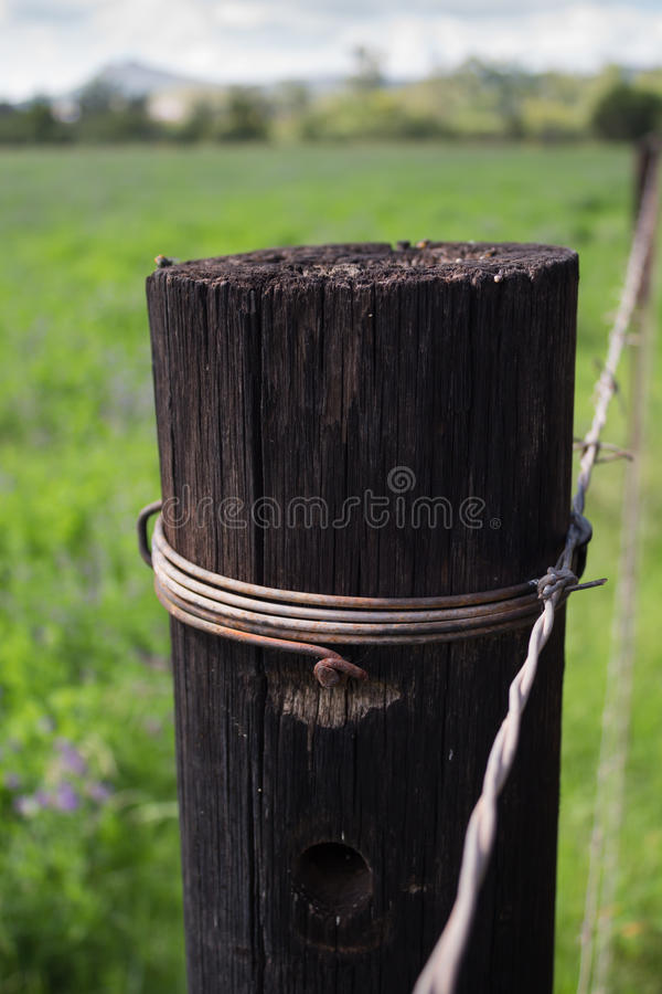 Único fim de madeira do cargo da cerca acima no ajuste rural fotografia de stock royalty free
