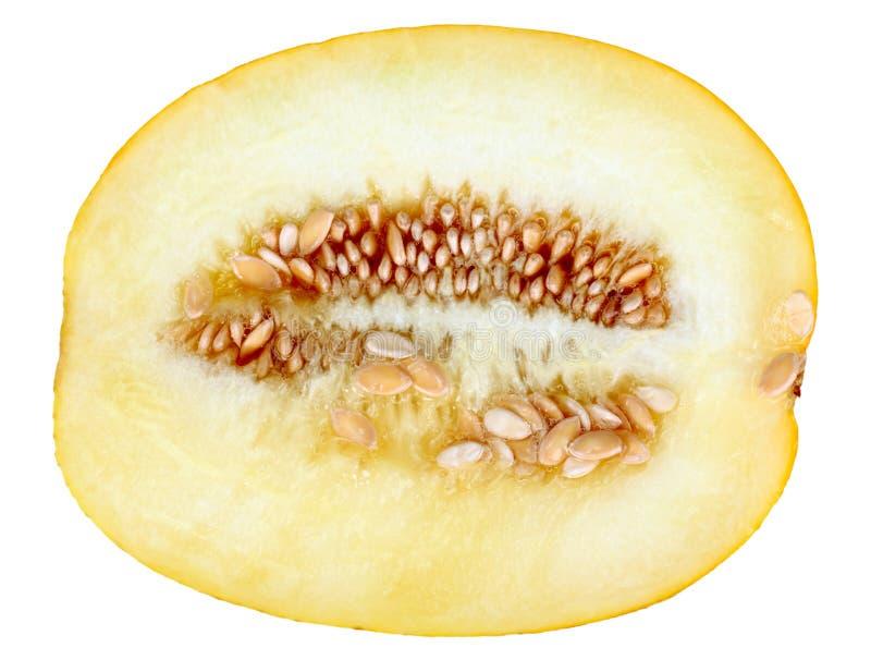 Único melão amarelo maduro transversal imagem de stock