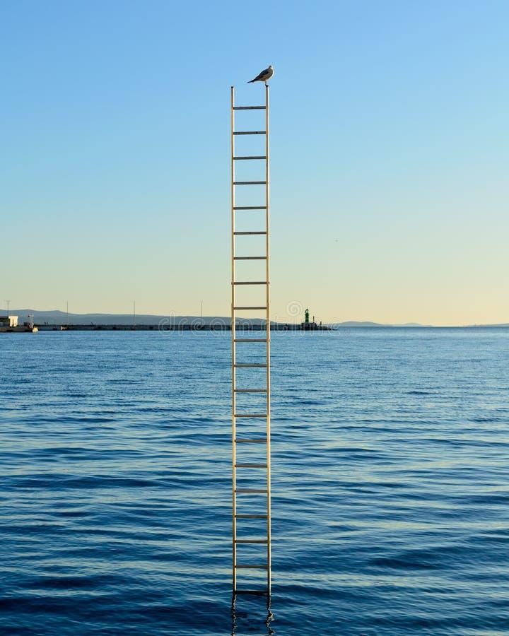 Único pássaro sobre a escada no mar imagem de stock royalty free