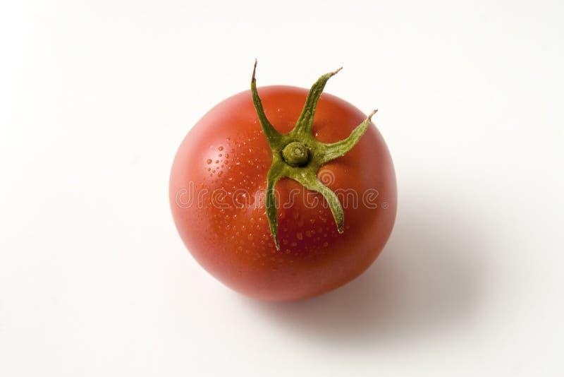 Único tomate com a haste isolada no fundo branco Vista superior foto de stock
