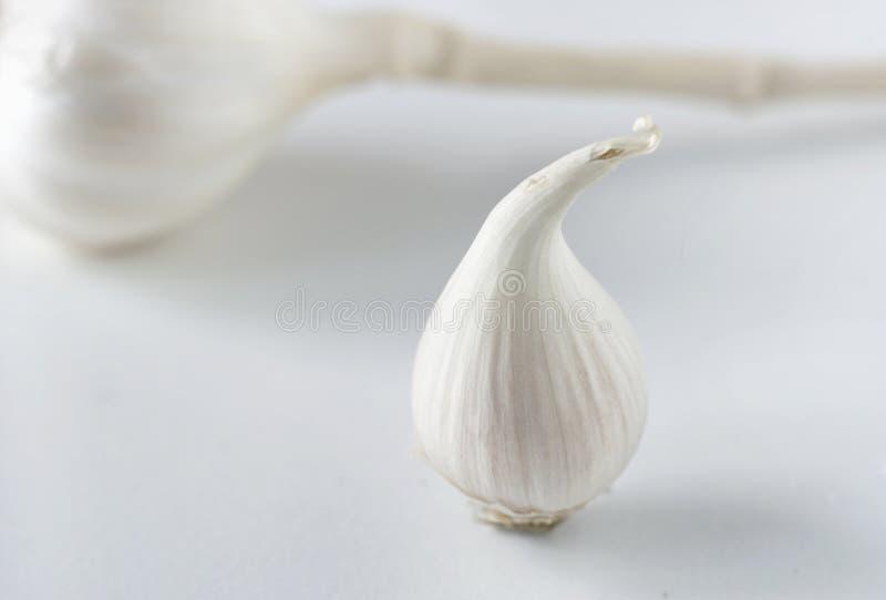Únicos cravos-da-índia de alho foto de stock royalty free