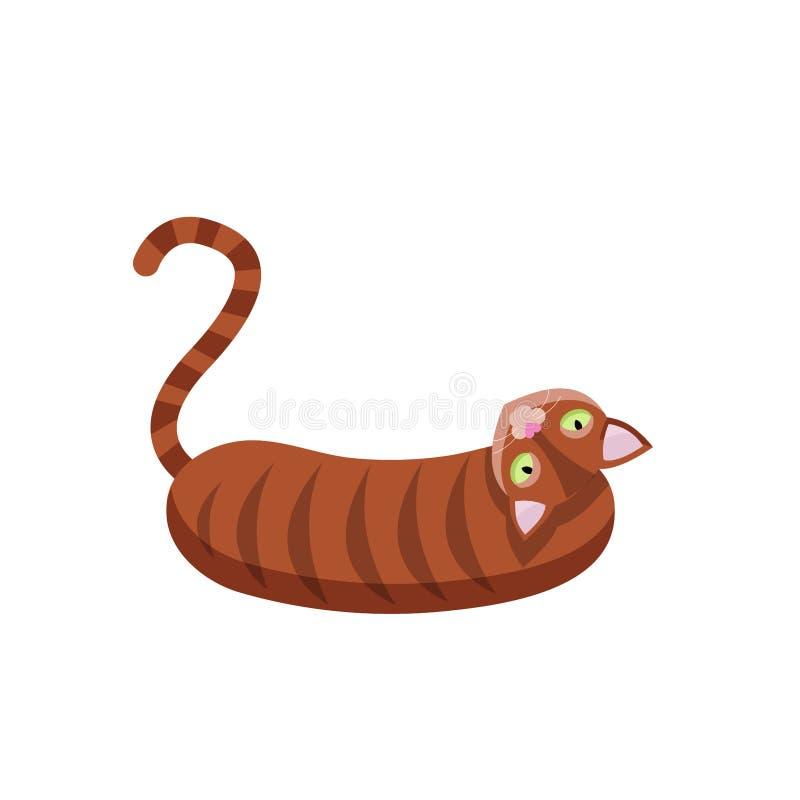 Únicos gatos listrados marrons que encontram-se no backgound branco vaquinha doméstica de assento felino para trás girada do mamí ilustração do vetor