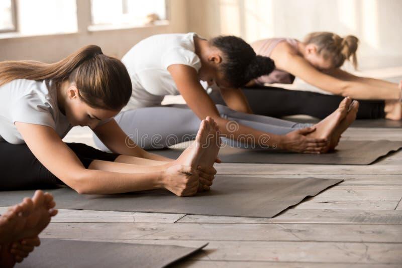 Übende Yogalektion der Frauengruppe in paschimottanasana Haltung stockbilder