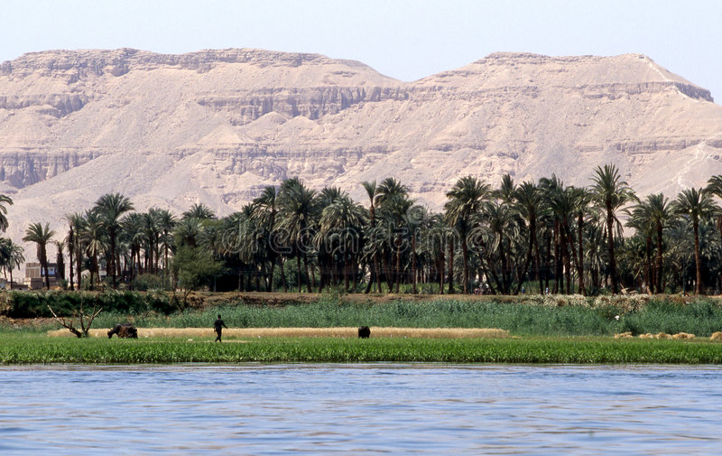 Über dem Nil stockbild