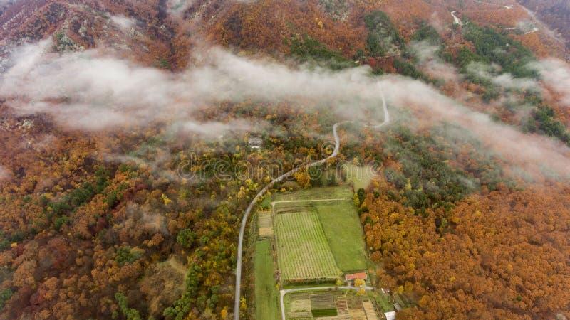 Über den Wolken in den Bergen in Bulgarien stockbild
