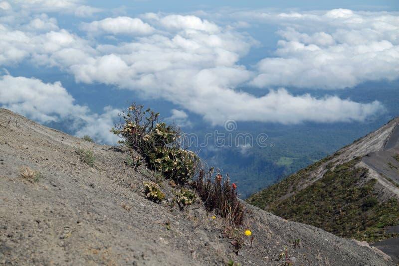 Über den Wolken in Costa Rica lizenzfreies stockfoto