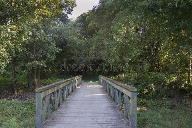 Über die Brücke über den Fluss lizenzfreies stockfoto
