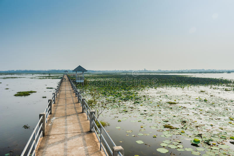 Überbrücken Sie Ansichtsee nonghan Sakon- Nakhonprovinz, Thailand lizenzfreie stockfotos