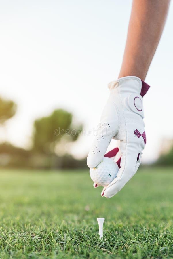 Übergeben Sie die Frau, die einen Golfball auf das T-Stück setzt lizenzfreies stockfoto