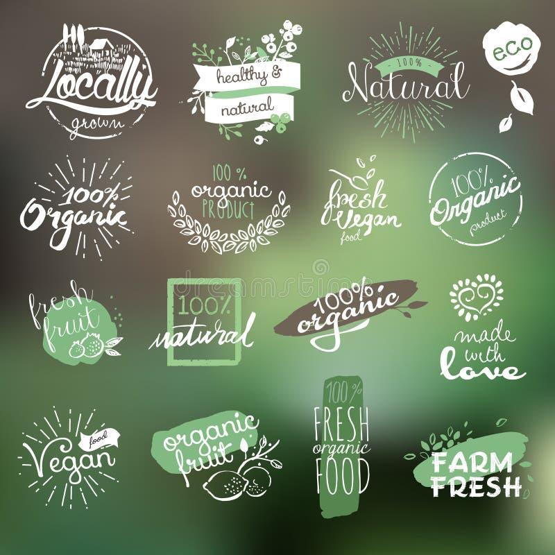Übergeben Sie gezogene Ausweise und Elementsammlung für biologisches Lebensmittel und trinken Sie lizenzfreie abbildung