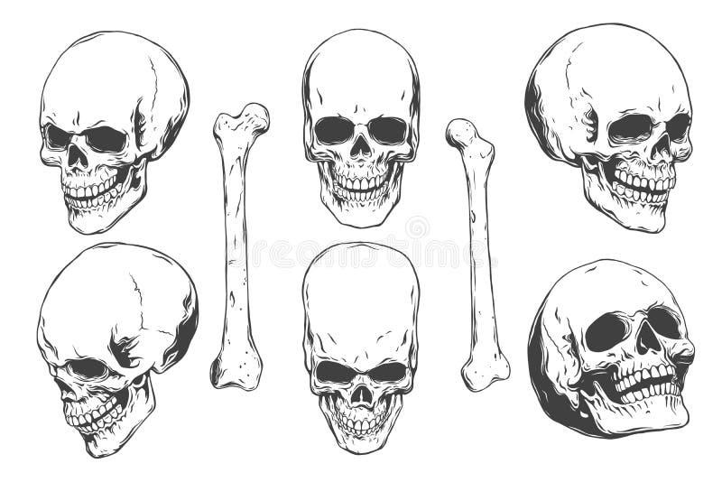 Übergeben Sie gezogene realistische menschliche Schädel und Knochen von den verschiedenen Winkeln Einfarbige Vektorillustration a stock abbildung