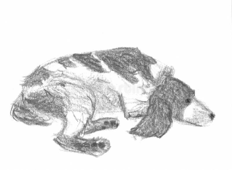 Übergeben Sie gezogene Skizze eines Spaniel-Hundes, der sich hinlegt vektor abbildung
