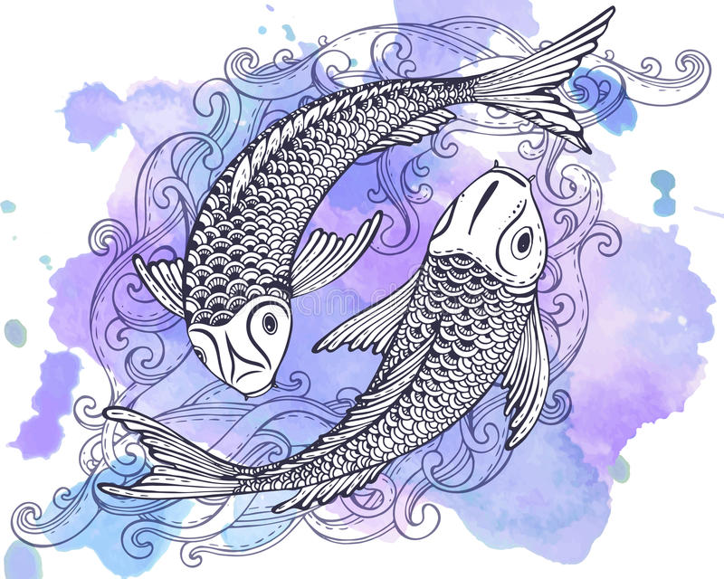 Übergeben Sie gezogene Vektorillustration von zwei Koi-Fischen (japanischer Karpfen) vektor abbildung